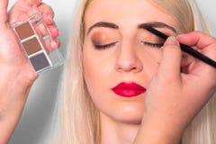 Makeup artist paints a woman eyebrows. Makeup. Beauty concept Stock Images