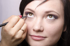 Makeup artist in the process of makeup colors eyelashes model Royalty Free Stock Photo
