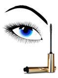 Makeup av ett kvinnligöga stock illustrationer