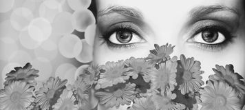 makeup black and white Royalty Free Stock Photography