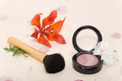 Makeup blusher rouge and brushes Stock Images