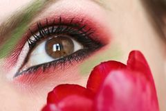 Makeup brown green eyes with red and green eyeshadow royalty free stock photo
