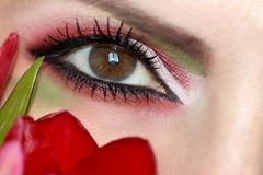 Makeup brown green eyes with red and green eyeshadow royalty free stock photography
