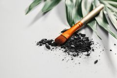 Makeup brush and crushed cosmetic product royalty free stock image