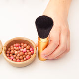 Makeup brush and rouge Royalty Free Stock Image