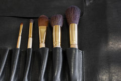 Makeup Brushes in a black cover Stock Image