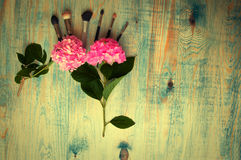 Makeup brushes and hydrangea on the abstract wooden blue backgro Stock Image