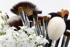 Makeup brushes set with flowers. Chickweed. White background Stock Photos