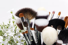 Makeup brushes set with flowers. Chickweed. White background Royalty Free Stock Photos