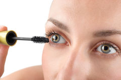 Makeup close-up. Eyebrow makeup, brush. Stock Image