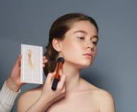 makeup cosmetic Palett för hudsignal Arkivbild