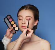 makeup cosmetic Palett för hudsignal Royaltyfria Bilder