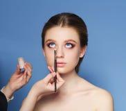 makeup cosmetic Palett för hudsignal Royaltyfri Bild