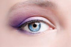 Makeup of a female eye Stock Photos
