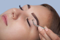Makeup Master corrects, and strengthens eyelashes beams, holding out a pair of tweezers in a beauty salon. Stock Photos