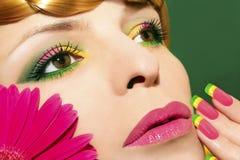 Makeup och spikar med gerberas. Arkivfoto