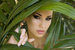 Makeup. Sexy beautiful woman hiding behind the palm leaves. Beau Stock Image