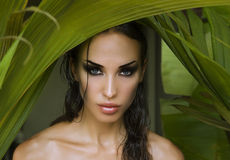 Makeup. Sexy beautiful woman hiding behind the palm leaves. Beau Royalty Free Stock Photos