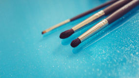 Makeupborstar royaltyfri foto