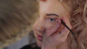 Makeupen för professionell för makeupkonstnär stock video