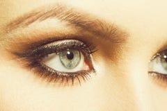 Makeupskuggor på ögon av flickan royaltyfri fotografi