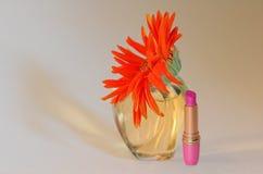 makeupsommar Fotografering för Bildbyråer