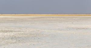 Makgadikgadi filtert Nationaal Park expansief landschap royalty-vrije stock foto