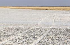 Makgadikgadi filtert Nationaal Park expansief landschap royalty-vrije stock afbeeldingen