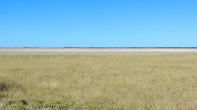 Makgadikgadi Pan Royalty Free Stock Photo