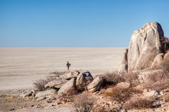 Makgadikgadi pans. Man looking at the view from Kubu Island in the Makgadikgadi pans Stock Image