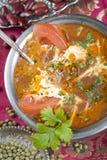 makhani för mor för ki för dal-mat indisk Royaltyfria Bilder
