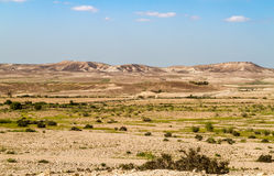 Makhtesh Gadol, Negev desert in the early spring, Israel Stock Photography