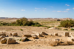 Makhtesh Gadol, Negev desert in the early spring, Israel Stock Images