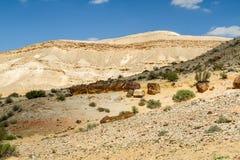 The Makhtesh Gadol in Negev desert, Israel Royalty Free Stock Image