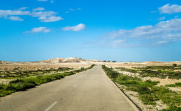 The Makhtesh Gadol, spring in Negev desert, Israel Stock Photo