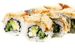 Maki Sushi-Rollen mit Gurke, Frischkäse, Thunfisch Stockbilder