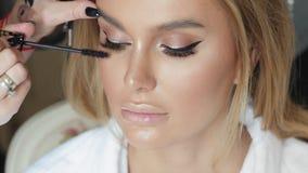 Makijażu artysta robi makijaż rzęsom w młodej kobiecie zbiory