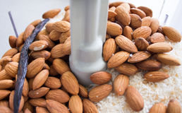 Making almond coconut butter in food processor Royalty Free Stock Photo