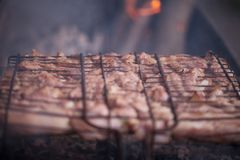 Making barbeque on grill. Weekend cookout. Cooking outside, picnic. Seasonal cooking Royalty Free Stock Photos