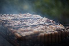 Making barbeque on grill. Weekend cookout. Cooking outside, picnic. Seasonal cooking Stock Image