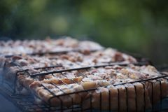 Making barbeque on grill. Weekend cookout. Cooking outside, picnic. Seasonal cooking Royalty Free Stock Photo