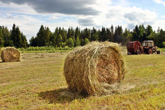 Making Big Round Bales Of Hay For Cattle Feed Royalty Free Stock Images