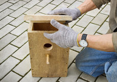 Making  birdhouse Stock Photos