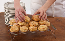 Making Biscuits Stock Images