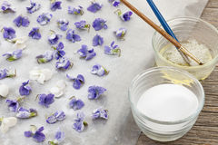 Making candied violets. Making candied violet flowers with egg whites and sugar Royalty Free Stock Photo