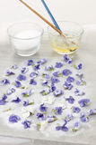 Making candied violets Stock Photo