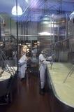 Making cheese Royalty Free Stock Photos