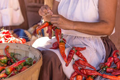 Making chili riestras. Woman stringing a chili riestra at Rancho Las Golondrinas near Santa Fe, New Mexico Royalty Free Stock Photos
