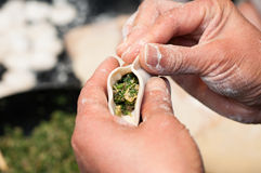 Making chinese dumpling Royalty Free Stock Images