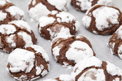 Making chocolate cookies Royalty Free Stock Photography